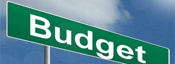 2017 Adopted Bedford Borough Budget